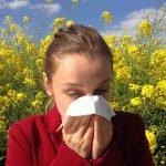 Purificador de aire contra la alergia