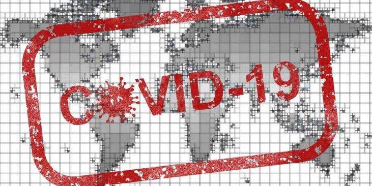 https://purificadordeairede.com/wp-content/uploads/2020/04/pandemia-virus-coronavirus-covid-19-731x366.jpg